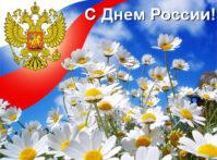 -России_Ромашки